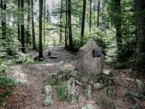 Keltengräber Zollikon